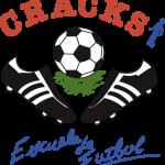 Cracks CF